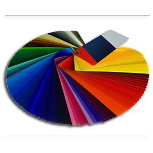 Farbe & Putze